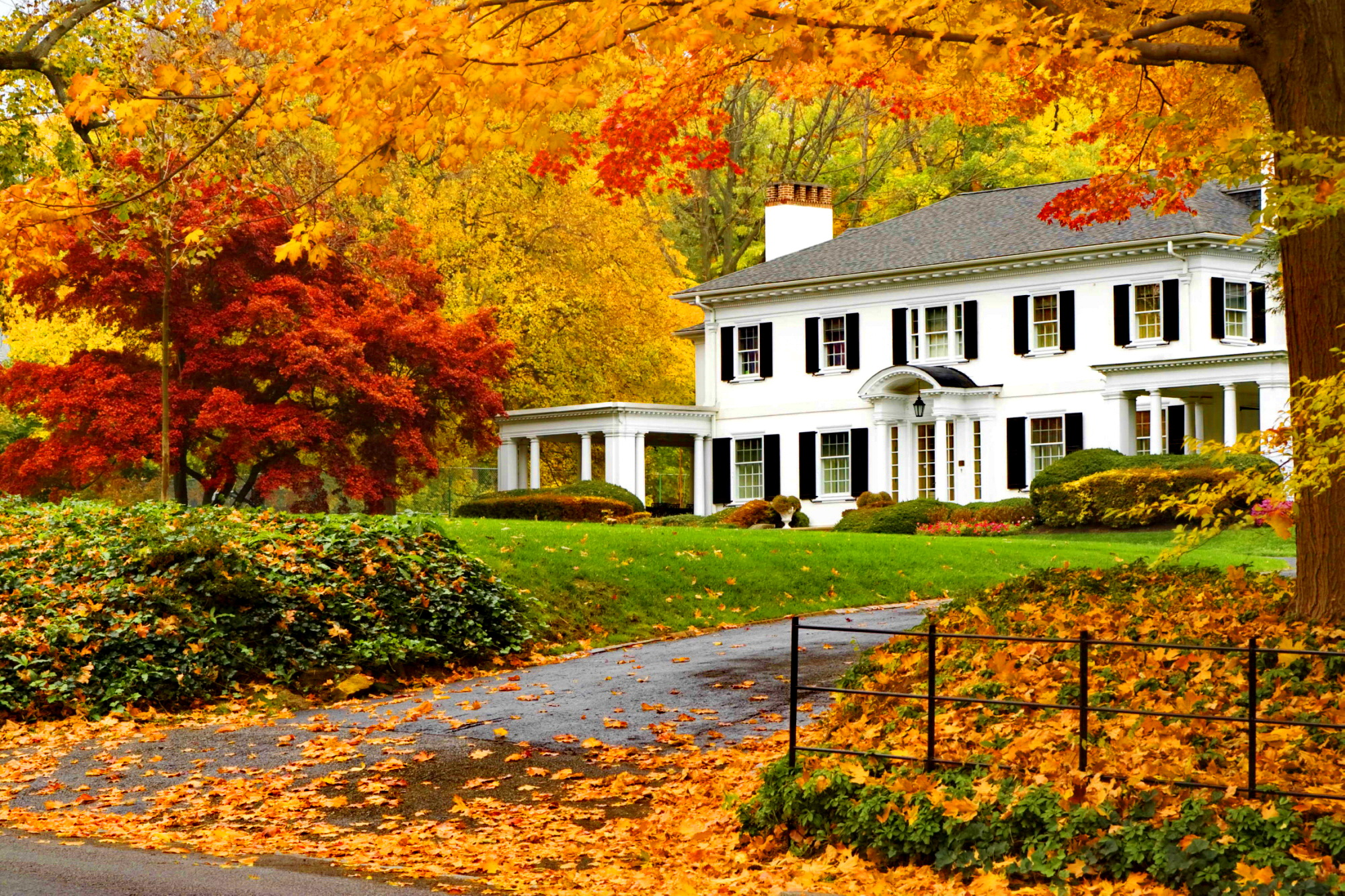 Why Smart Spring Sellers Start In Autumn Fairfield